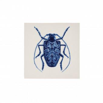 Royal Delft Wunderkammer Bug Tegel 06