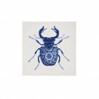 Royal Delft Wunderkammer Bug Tegel 07